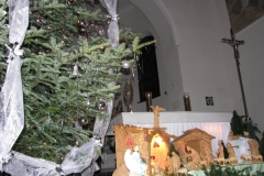 2011-vianoce026